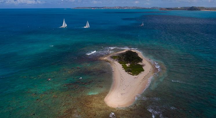 oyster sailing yachts antigua regatta
